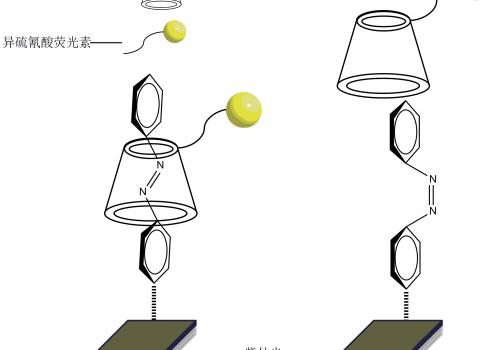 多功能三维形状记忆高分子