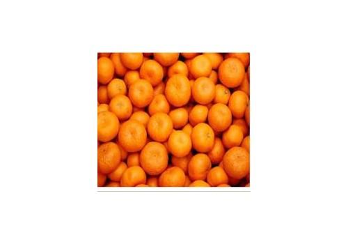 一种水果保鲜剂的制备工艺及其应用